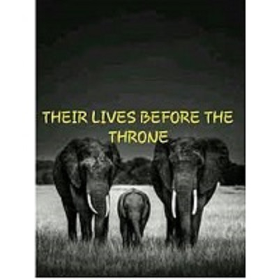 Their Lives Before The Throne by Thandeka Zuke PDF Download