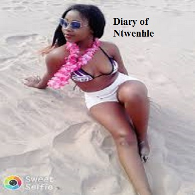Diary of Ntwenhle PDF Download