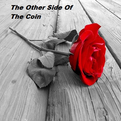 The Other Side Of The Coin PDF Download