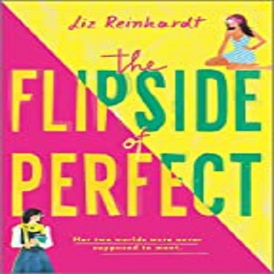 The Flipside of Perfect by Liz Reinhardt PDF Download