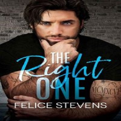 The Right One by Felice Stevens PDF Download