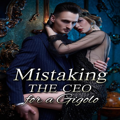 Mistaking the CEO for a GigoloPDF Novel Free